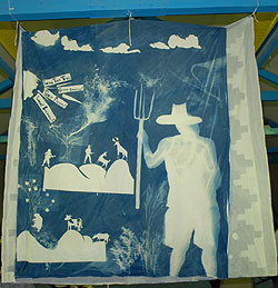 Cyanotype by In-Sight students